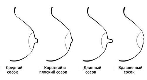 smotret-u-soskov-bolshie-oreoli