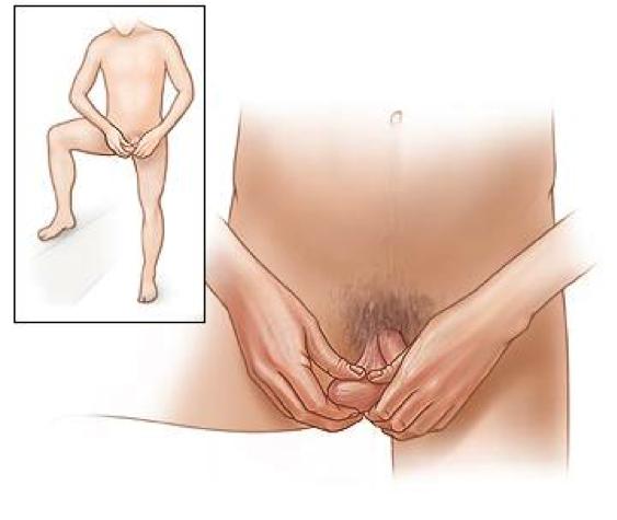 Нравится ли мужчинам когда им сжимают яички