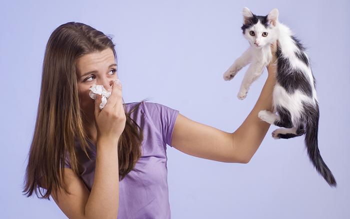 Аллергия на животных у взрослых и детей: симптомы, причины и лечение