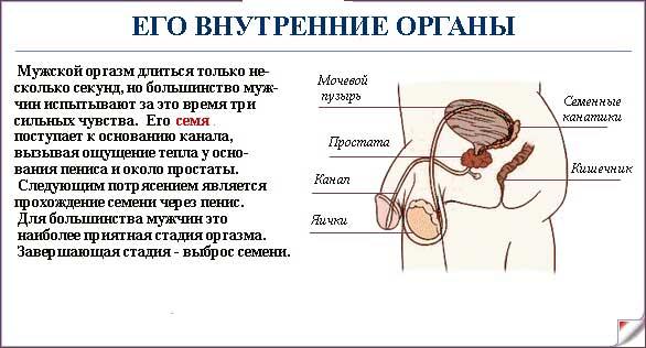 oshusheniya-pri-orgazme-u-muzhchin